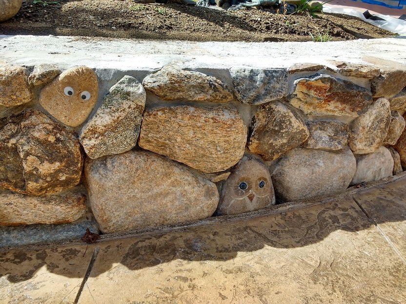 little owls peering out from the masonry outside the shrewsbury public library